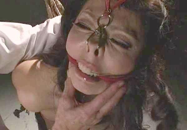 【SM】ハード系の極致!爆乳女を緊縛し、激痛ムチ打ちを繰り返す拷問!拘束に鼻フックで身動き取れない奴隷を調教!